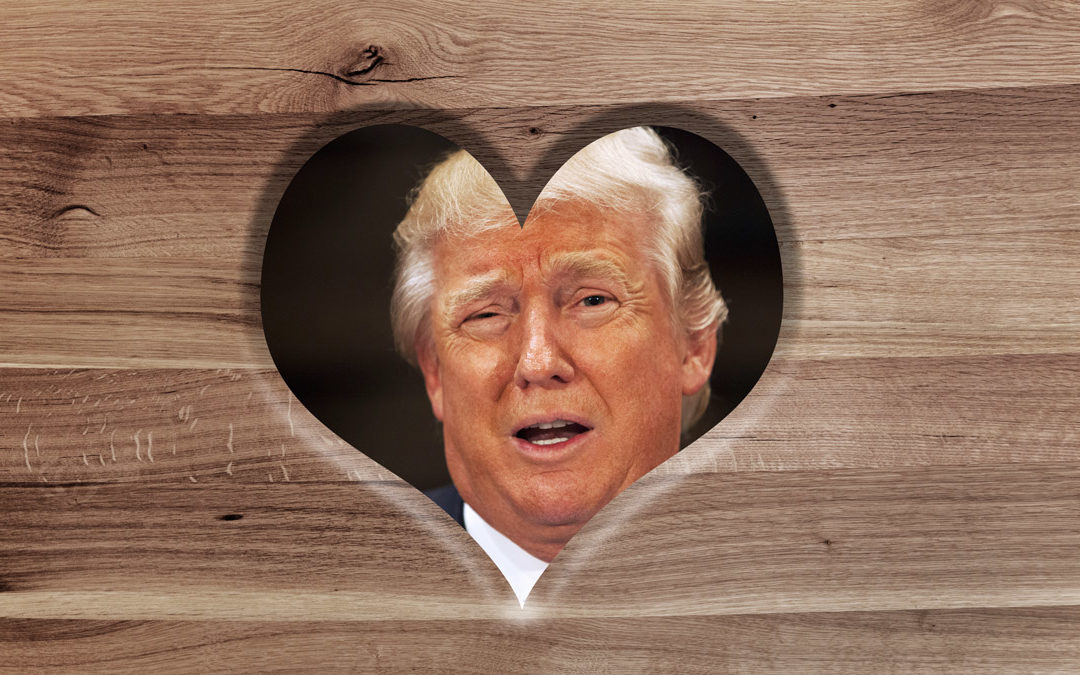 Peace-Loving Trump Lover???
